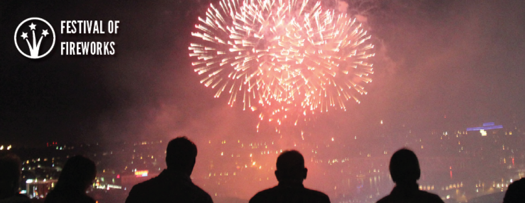 Festival of Fireworks annual report photo